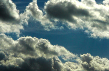 Bird on a Cloudy Blue Sky | Photographie © Rémi Blaza Photographe
