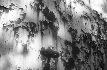 Rouille ruines et Urbex | Photographie © Rémi Blaza Photographe
