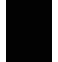 Logo FSD Festival de Saint-Denis